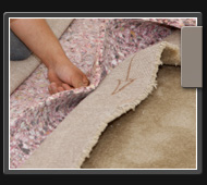 Philadelphia,PA carpet steam cleaning